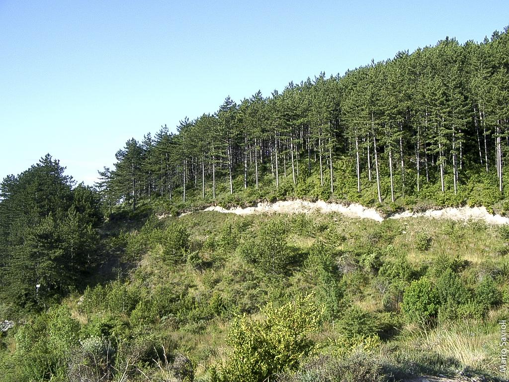 Camminio di Santiago - Larrasoana - Pamplona - Cizur Menor
