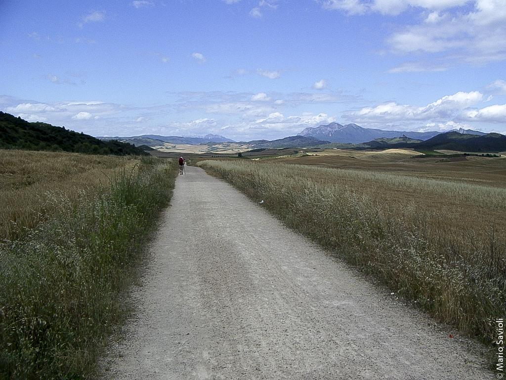 Camminio di Santiago