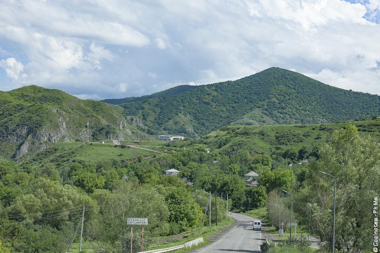 La natura in Georgia