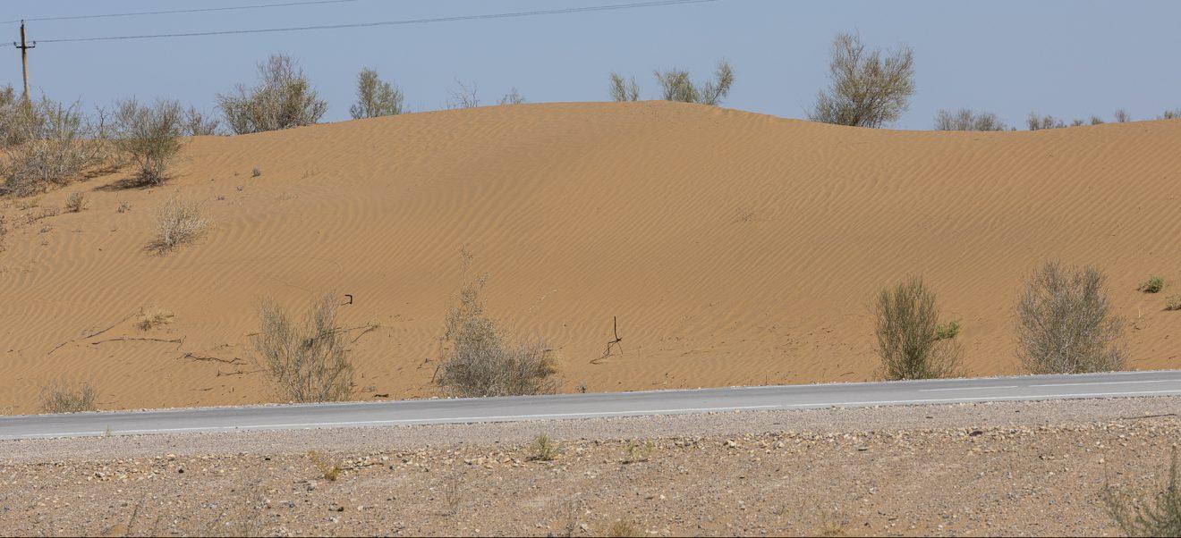 Deserto rosso di Kyzilkum in Uzbekistan e palazzo d'estate